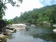 Điểm Du Lịch Buôn Ma Thuột: Vườn Quốc Gia Chư Yang Sin