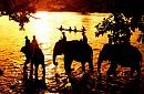 Tour Du Lịch Tây Nguyên 4N3D: Buôn Ma Thuột - Pleiku - KonTum Từ Hà Nội