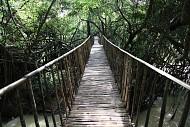 Điểm Du Lịch Buôn Ma Thuột: Cầu Treo Buôn Đôn