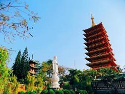 VTN51. Tour du lịch Hồ Chí Minh khám phá Gia Lai – Đak Lak – Kom Tum