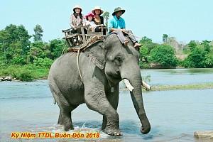 VTN11: Tour Du Lịch Tây Nguyên 1 ngày: Buôn Đôn - Thác Draynur
