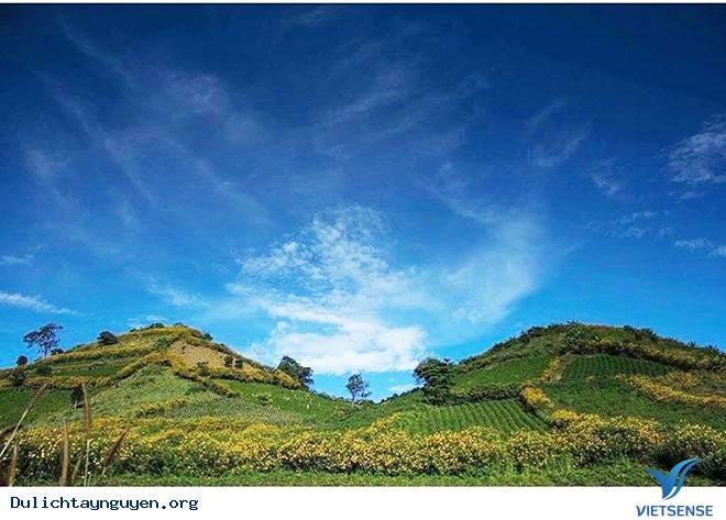 Chư Đăng Ya - Viên Ngọc Bí Ẩn Của Núi Rừng Tây Nguyên